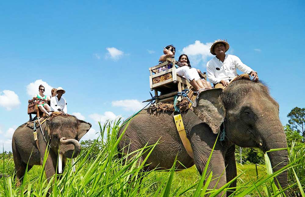 bali-elephant-ride-adi-tour-guide