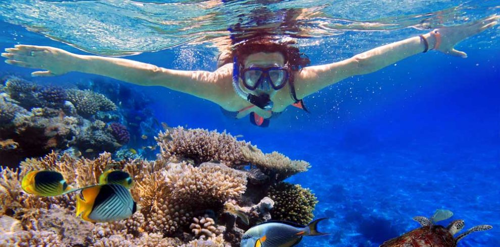 Snorkeling Glass Bottom Boat Turtle Island 2 Hours Spa Sunset