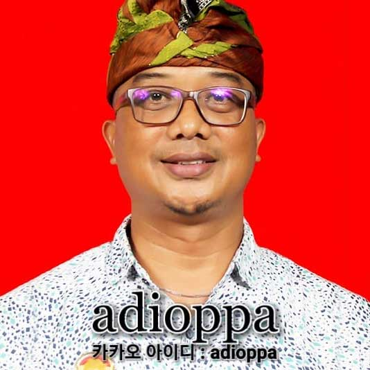ADIOPPA (KOREAN GUIDE & DRIVER)